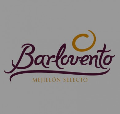 Barlovento branding